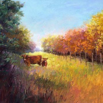 cow-360x360